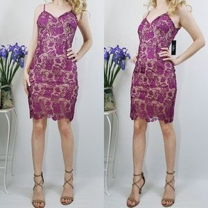 Back To You Magenta Lace Bodycon Lulus Dress